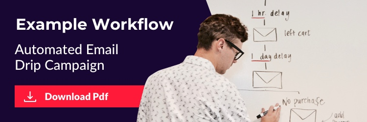 Download our workflow example